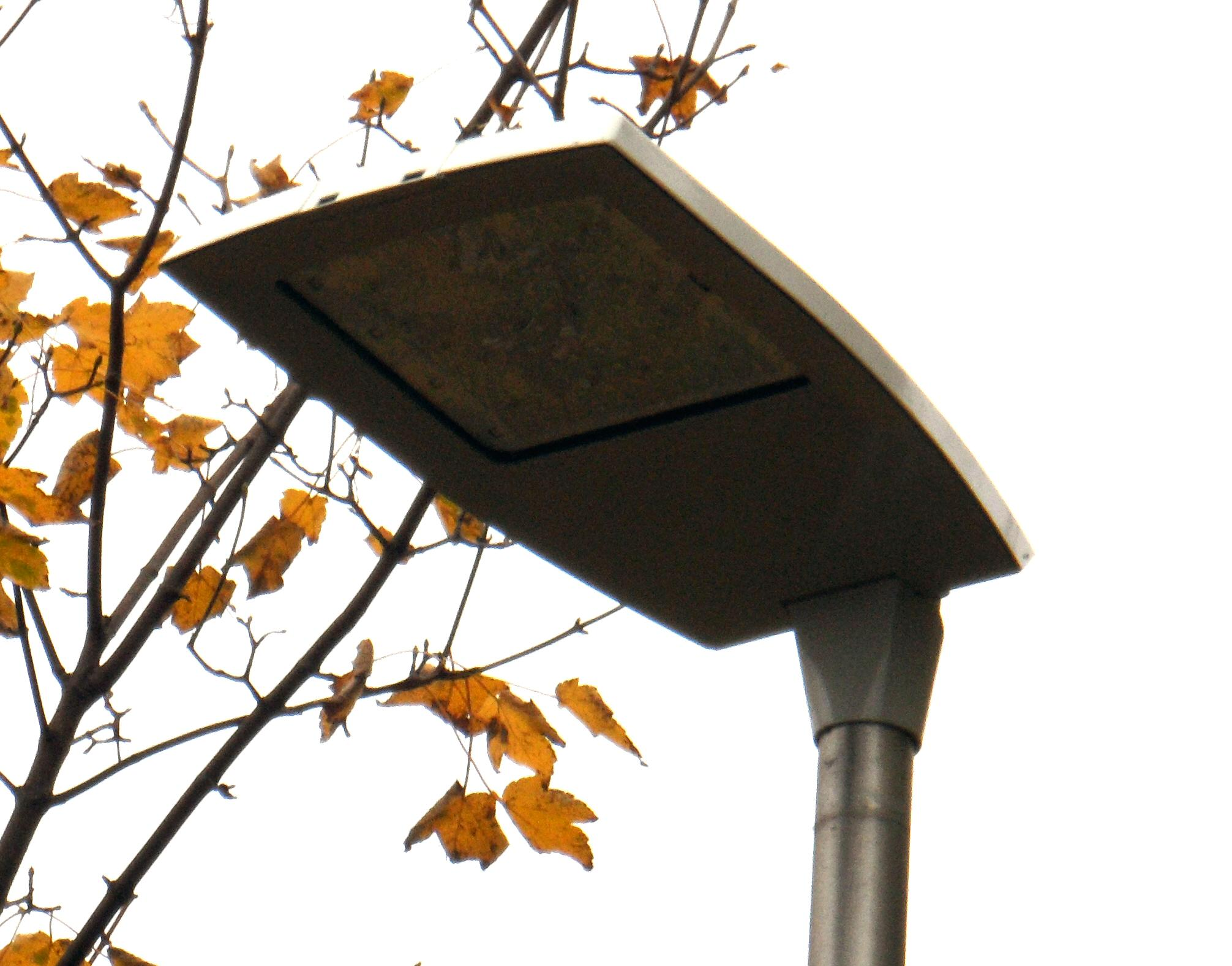 Led Road Lamp Waterproof Solar Led Lamp Lighting Up Your